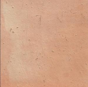 Serenissima FALCONI 42.5*42.5cm