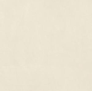 SANT'AGOSTINO CONCEPT LUX WHITE 60*60 porcelain stoneware