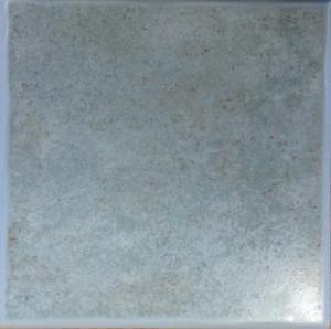 GARDENIA LE CRETE DI PIAN MONTALCINO 20*20 cm